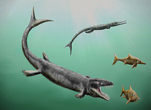 Dakosaurus - D. andiniensis pursuing ichthyosaurs with Cricosaurus in the background