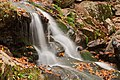 Dark Hollow Falls - HDR (15644542950).jpg