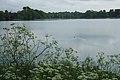 Daventry Reservoir - geograph.org.uk - 1431649.jpg
