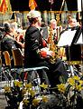 Defence Forces Massed Bands Concert (12749652565).jpg