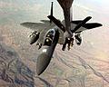 Defense.gov News Photo 990326-F-4884R-002.jpg