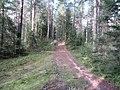 Degučių sen., Lithuania - panoramio (168).jpg