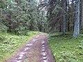 Degučių sen., Lithuania - panoramio (195).jpg