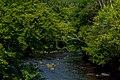 Dells of the Eau Claire River PLT-TR-FT-4.jpg