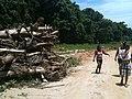 Destruição^ 2013, aonde o rio transbordou... - panoramio (1).jpg