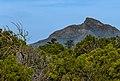 Devil's Peak from Robben Island.jpg