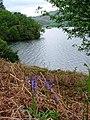 Devils Chimney, Ullswater - geograph.org.uk - 173202.jpg