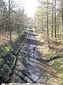 Disused Chopwell and Garesfield Railway, Chopwell Wood - geograph.org.uk - 761059.jpg