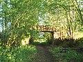 Disused footbridge over a disused railway - geograph.org.uk - 222751.jpg