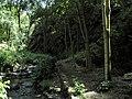 Divoká Šárka - panoramio (19).jpg