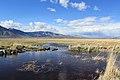 Douglas County - panoramio (60).jpg