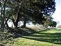 Earthworks surrounding Roman settlement - geograph.org.uk - 328311.jpg