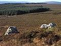 East Kielder Moor - geograph.org.uk - 1546545.jpg
