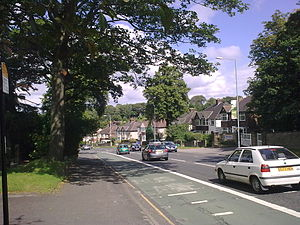 Ecclesall Road - Ecclesall Road South, which runs through a large part of the Hallam Constituency, the second wealthiest in the UK
