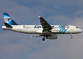 EgyptAir Airbus A320 (SU-GCC) on finals at Ataturk Airport.jpg