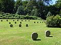 Ehrenfriedhof Koenigshoehe Graeberfeld -.jpg