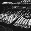 Eieren bij een sorteer- en inpakmachine, Bestanddeelnr 252-9082.jpg