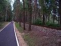 Eisenbahn & Fahrradweg bei Kromlau, Deutschland - panoramio.jpg