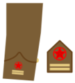 Ejerpopulardivi16.png