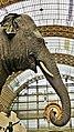 Eléphante Marguerite (ou Parkie) au Musée d'Orsay 13.jpg