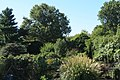 Emerald Necklace, Fenway Victory Gardens, Boston. - panoramio (2).jpg