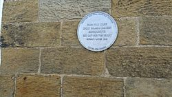 Photo of Emily Davison red plaque