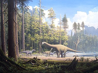 Jurassic - Various dinosaurs roamed forests of similarly large conifers during the Jurassic period.
