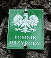 Ev. cemetary in Szydlowiec, gm. Orchowo (6).JPG
