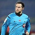FC Admira Wacker vs. SK Rapid Wien 2015-12-02 (171).jpg