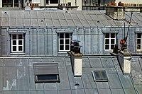 Fameux toits en zinc de Paris.jpg