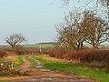 Farm track to Westborough - geograph.org.uk - 301670.jpg