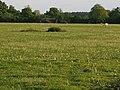 Farmland on the Beckingham Army Training Area - geograph.org.uk - 439589.jpg