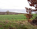 Farmland with Woolley Edge motorway services visible - geograph.org.uk - 627897.jpg