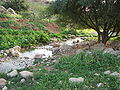Fatzael Springs and water system 015.JPG