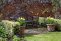 Feeringbury Manor Thakeham Bench Lutyens Bench tulips, Feering Essex England.jpg