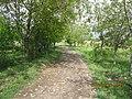 Ferdowsieh Avenue At Hajjiabad,Zeberkhan 13950201.jpg