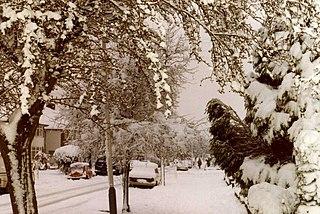 1981–82 United Kingdom cold wave