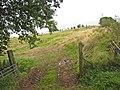Field near Dodgsontown - geograph.org.uk - 547803.jpg