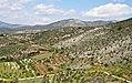 Fields of Mycenae (3375402749).jpg
