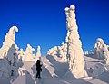 Finland 2012-01-28 (6984008835).jpg