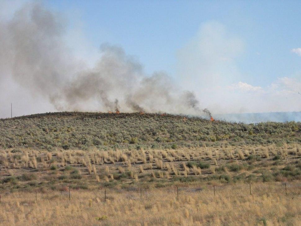 Fire near Hammett Idaho 2005