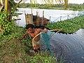 Fisherman From Thrissur DSC00110.JPG