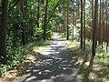 Fläming-Skate Rundkurs S2 bei Luckenwalde - panoramio.jpg