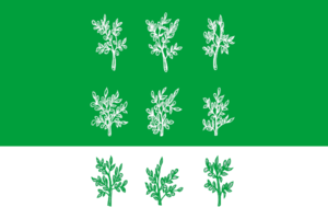 Bogoroditsky District - Image: Flag of Bogoroditsky rayon (Tula oblast)