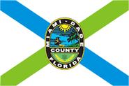 Flag of Miami-Dade County, Florida