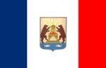 Flag of Novgorod oblast.png