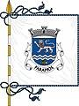 Flag of Paramos (Espinho).jpg