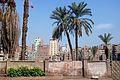 Flickr - Daveness 98 - Cairo promenade.jpg