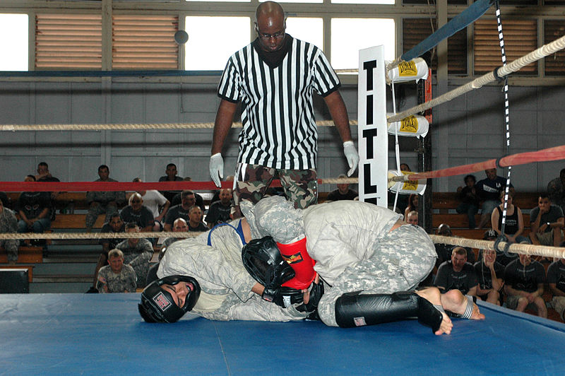 File:Flickr - The U.S. Army - Army combatives tournament validates program, vision.jpg