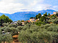 Flickr - ronsaunders47 - Olive trees, villas and a mountain. Thassos Island. Greece..jpg